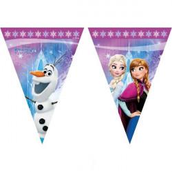 Frozen Northern Lights Flaggirlang
